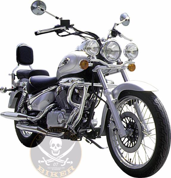 BARRE de PROTECTION MOTEUR SUZUKI VL125 / VL250 INTRUDER...SP412 SPAAN LA BOUTIQUE DU BIKER