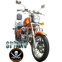 BARRE de PROTECTION MOTEUR GILERA 125 COGUAR...SP420 CHROME...SPAAN LA BOUTIQUE DU BIKER